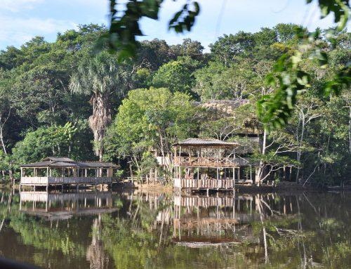 Le fichier amazonien